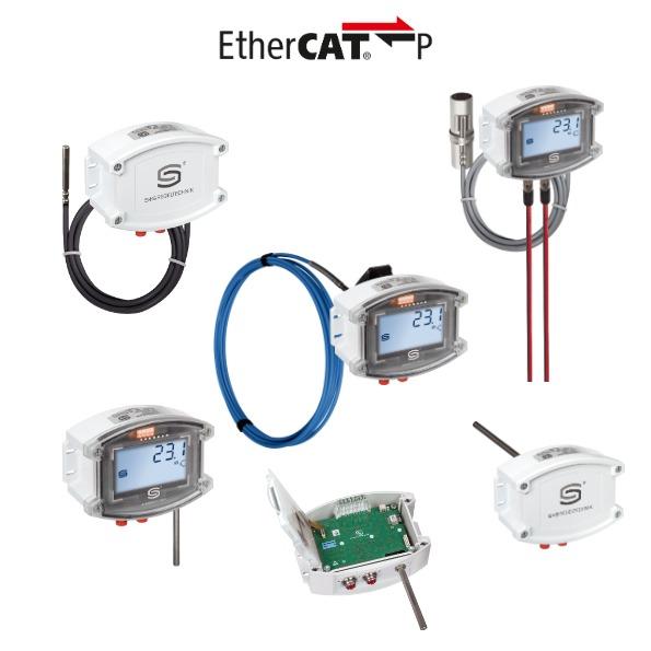 Sonde EtherCAT P